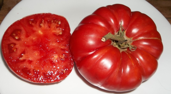 The Biggest Tomatoes